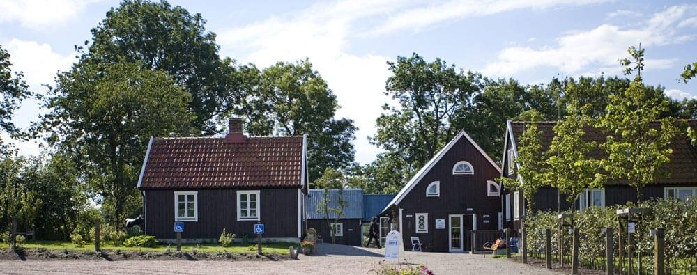 Birgit Nilsson Museum firar 10 år på söndag